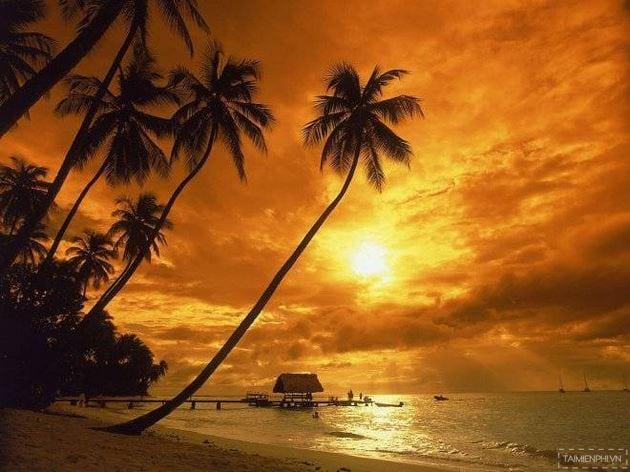 cảnh bình minh trên biển nha trang
