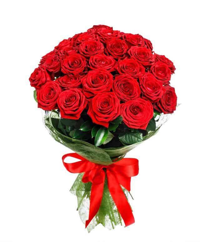 ảnh hoa hồng full hd