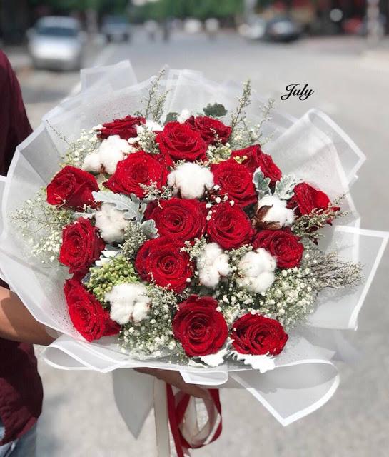 ảnh hoa hồng đỏ