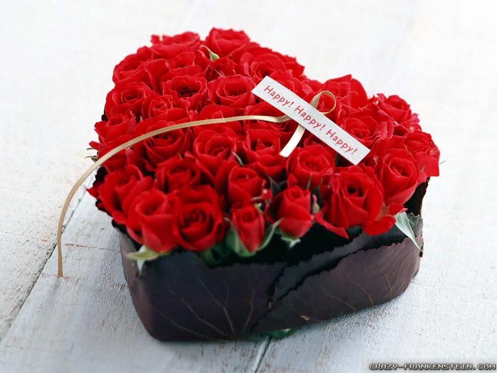 ảnh hoa hồng ngoại đẹp