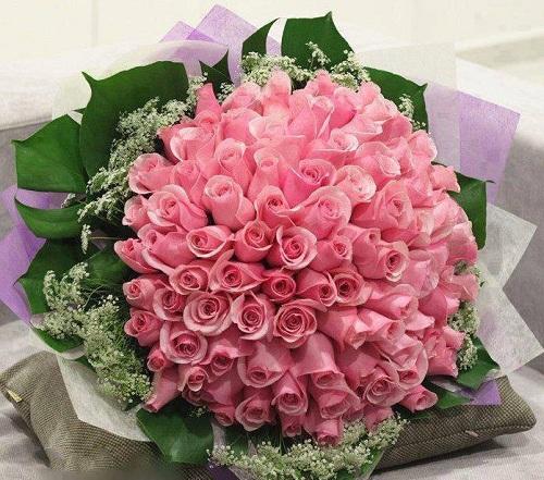 25 hình ảnh hoa hồng tím đẹp