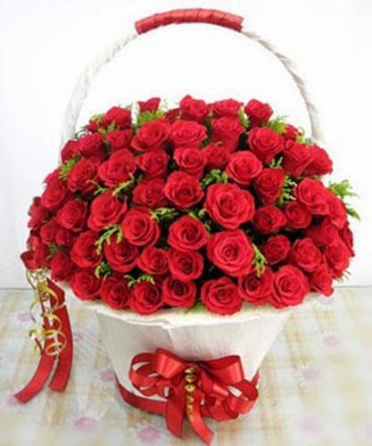 hình ảnh hoa quất hồng bì