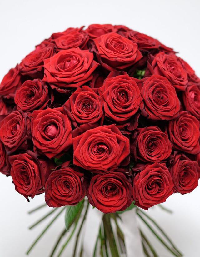 hình ảnh quả hoa hồng