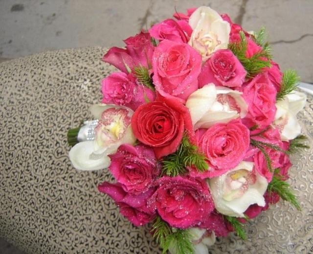 ảnh hoa hồng đẹp buồn