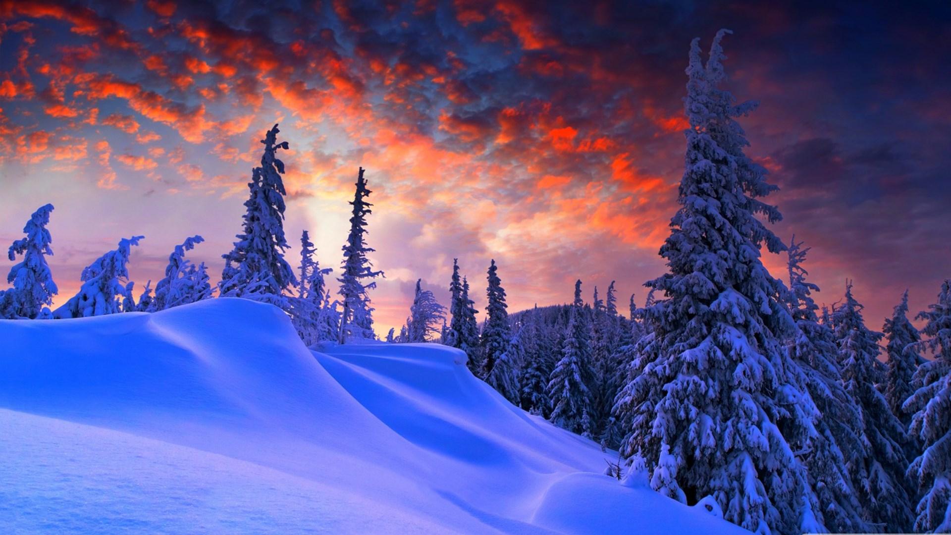 cảnh mùa đông trong truyện kiều