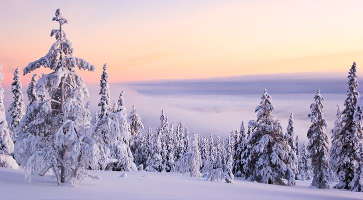 ảnh đẹp tình yêu mùa đông