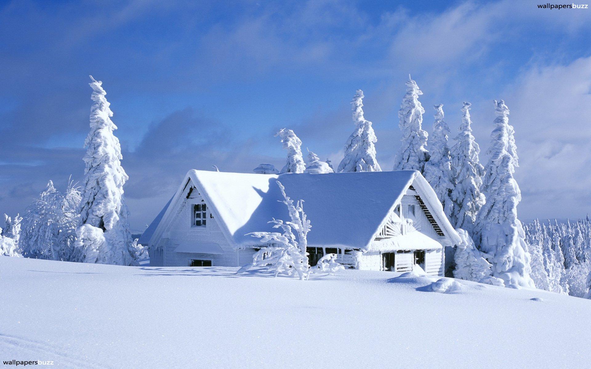 ảnh lulu mùa đông kì diệu