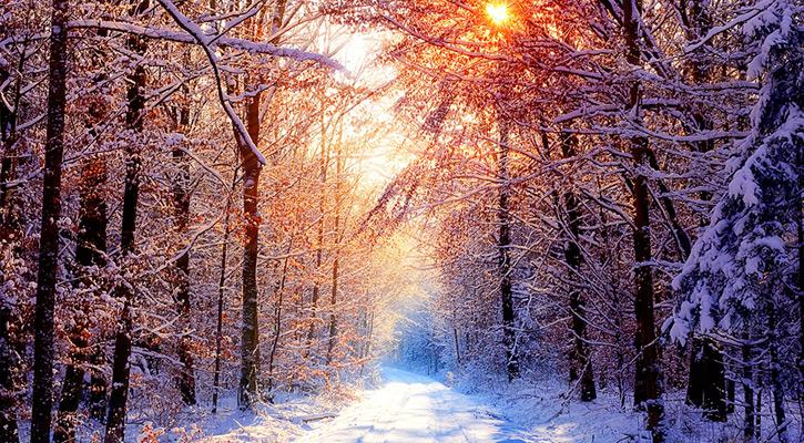 ảnh sapa mùa đông