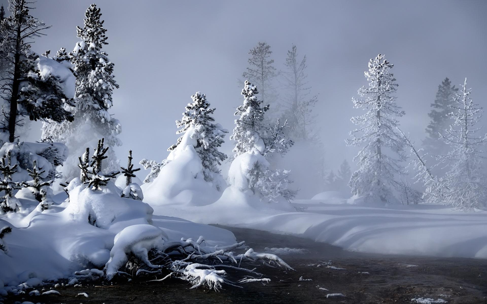 ảnh mùa đông làm avatar