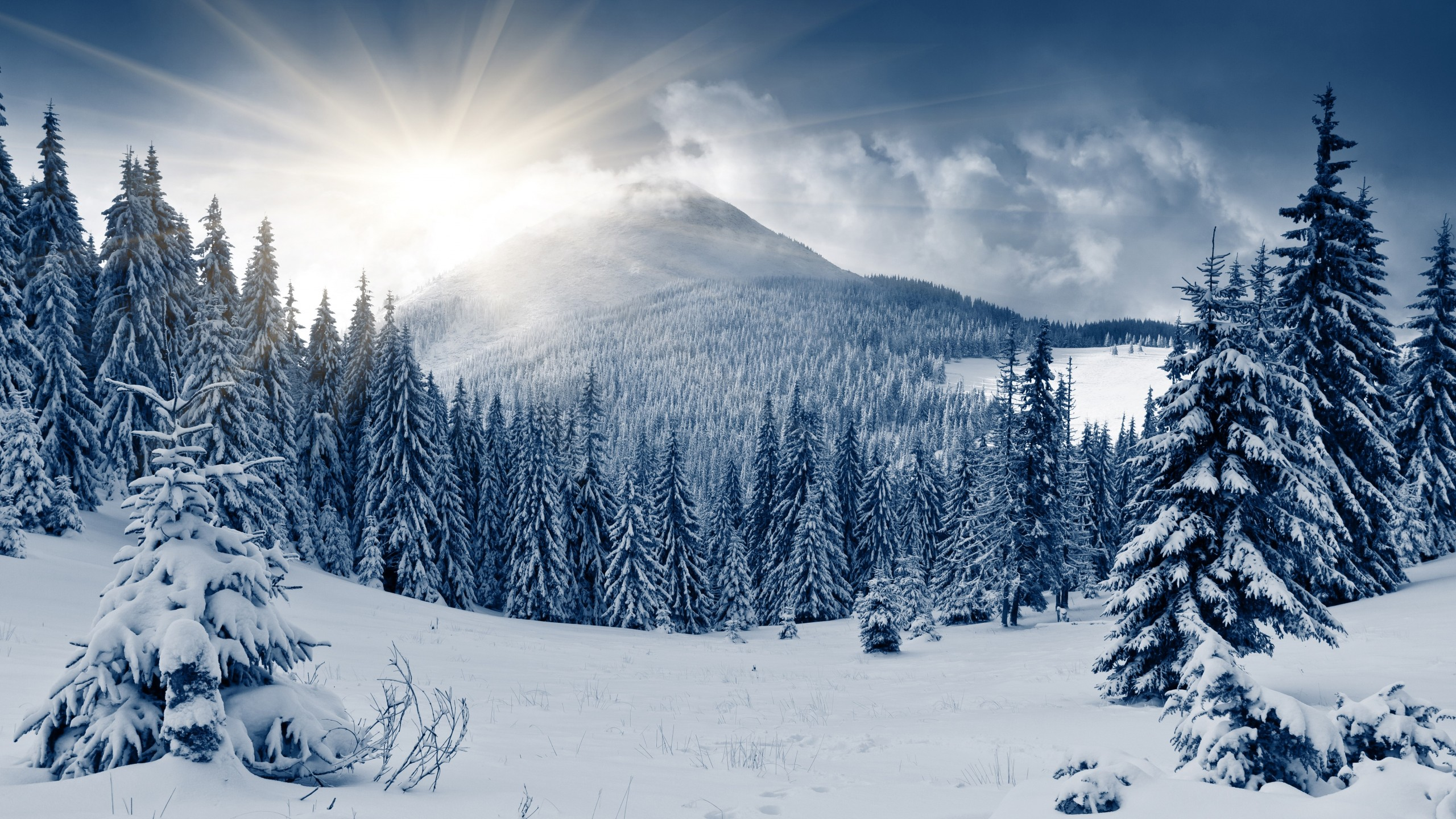 ảnh desktop mùa đông