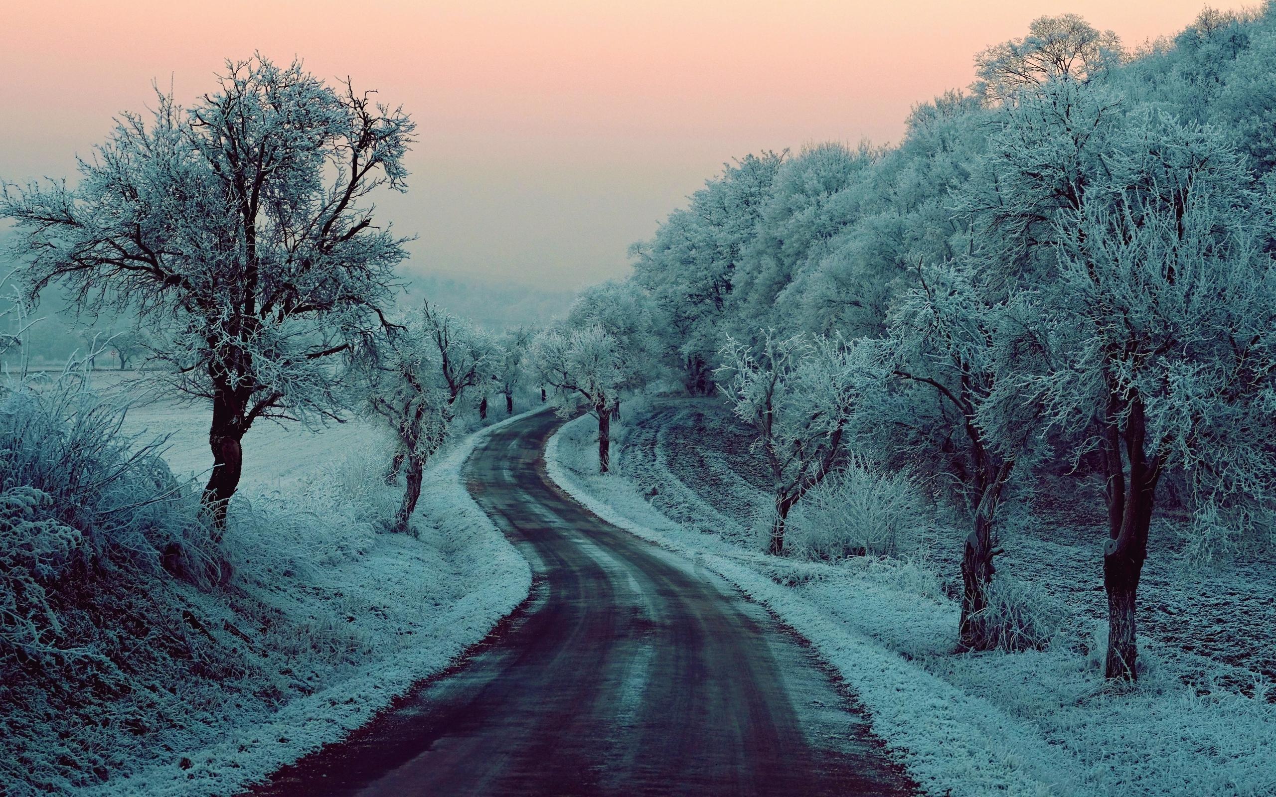 hình ảnh mùa đông ở việt nam