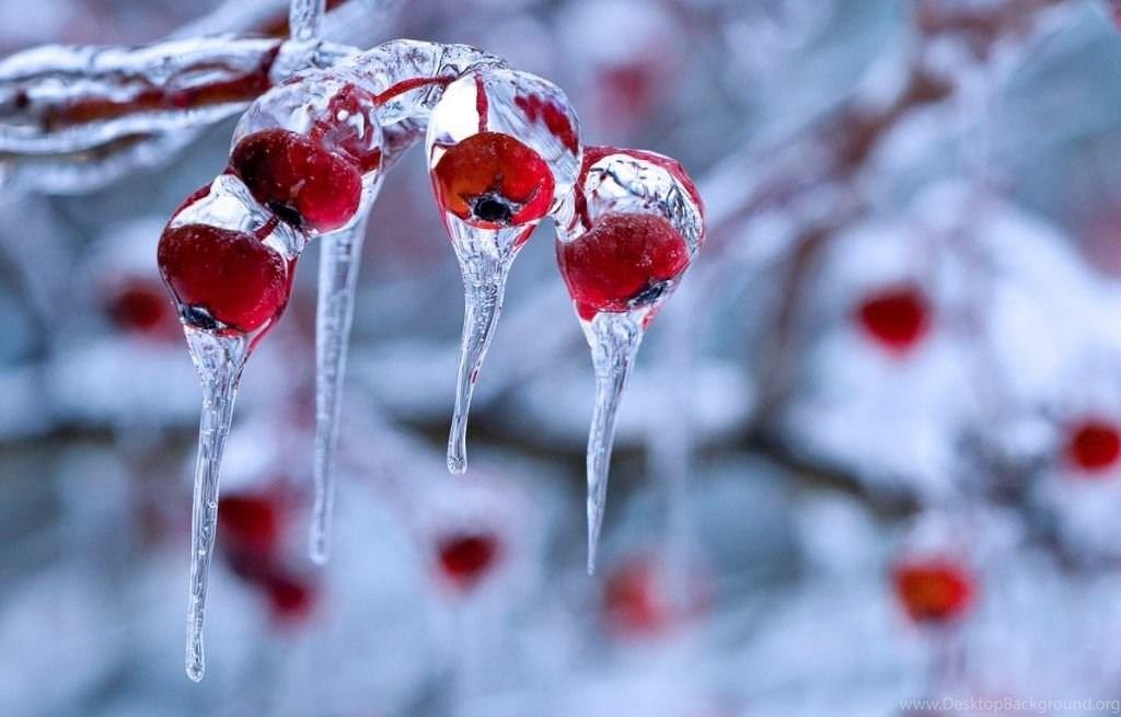 hình ảnh trang phục mùa đông