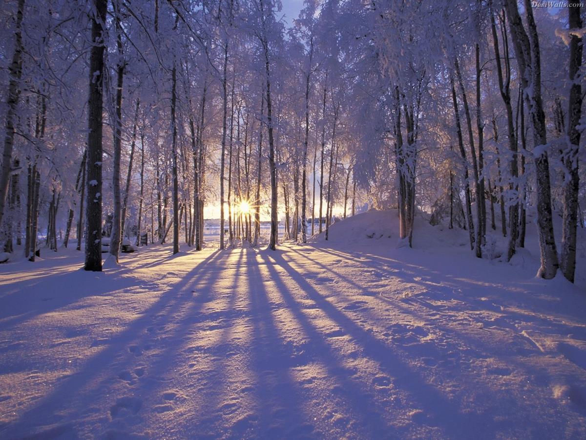 chụp ảnh mùa đông đẹp