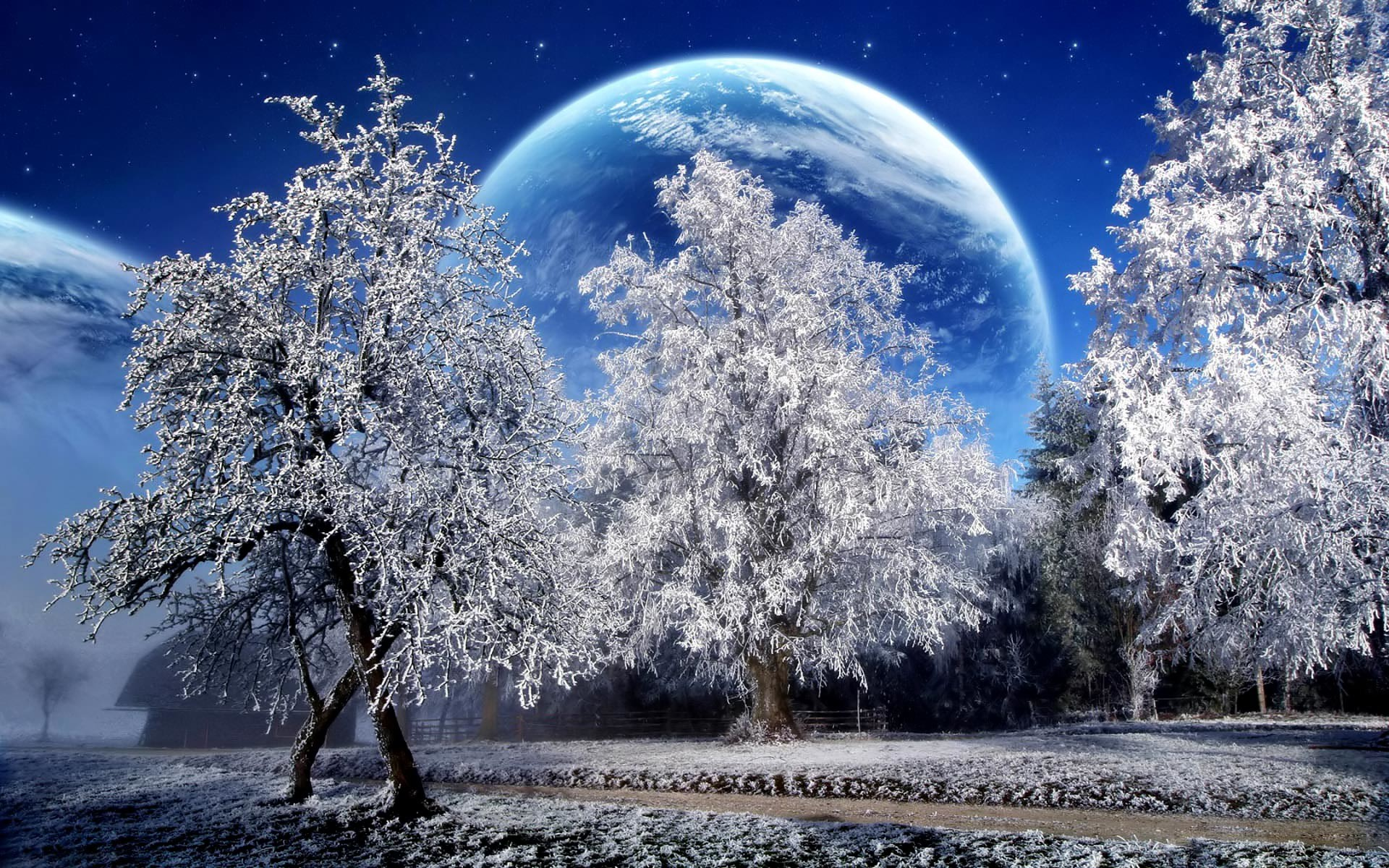cảnh mùa đông
