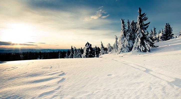 hình ảnh quần áo mùa đông cho bé gái