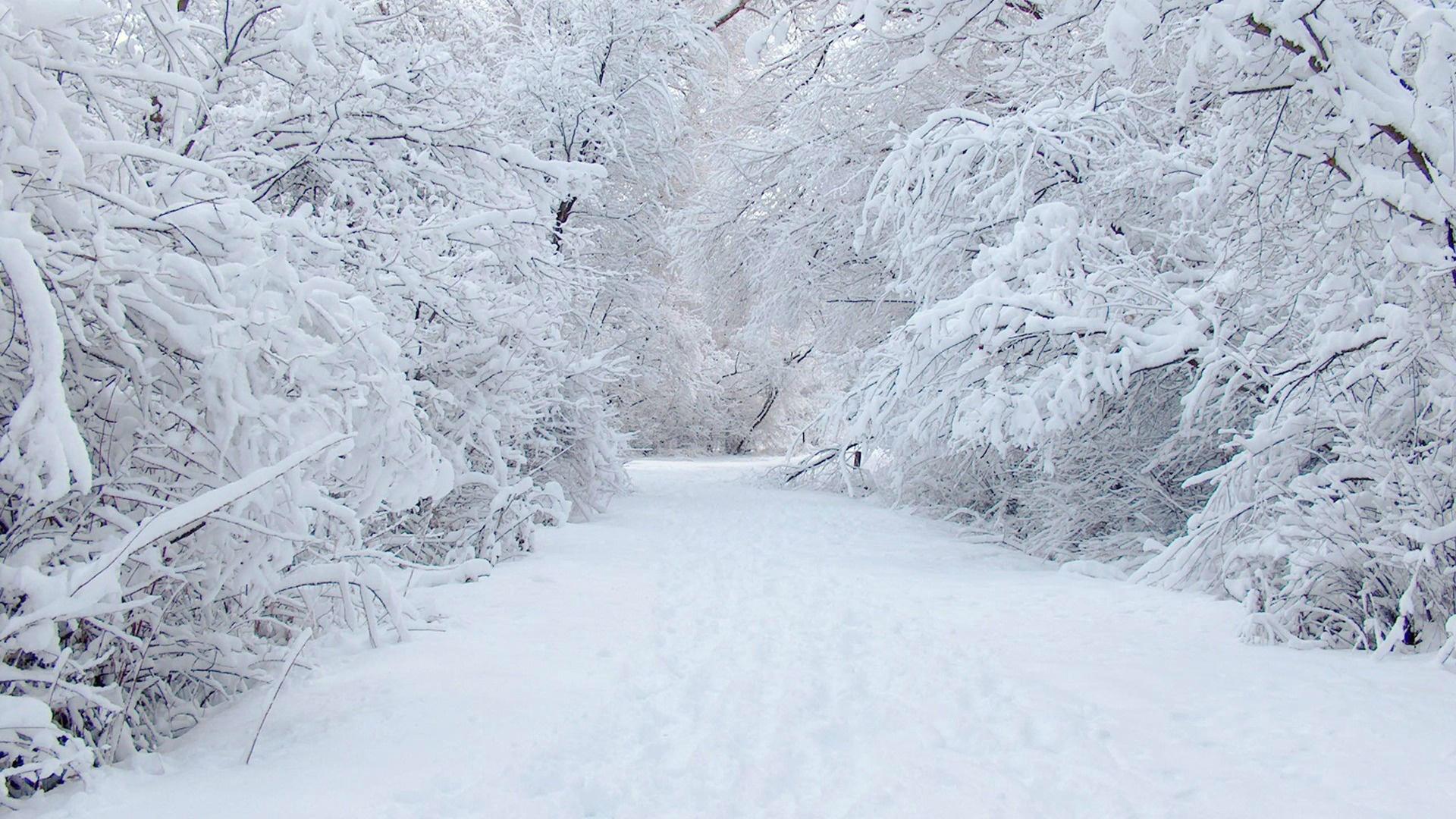 hình nền máy tính mùa đông đẹp