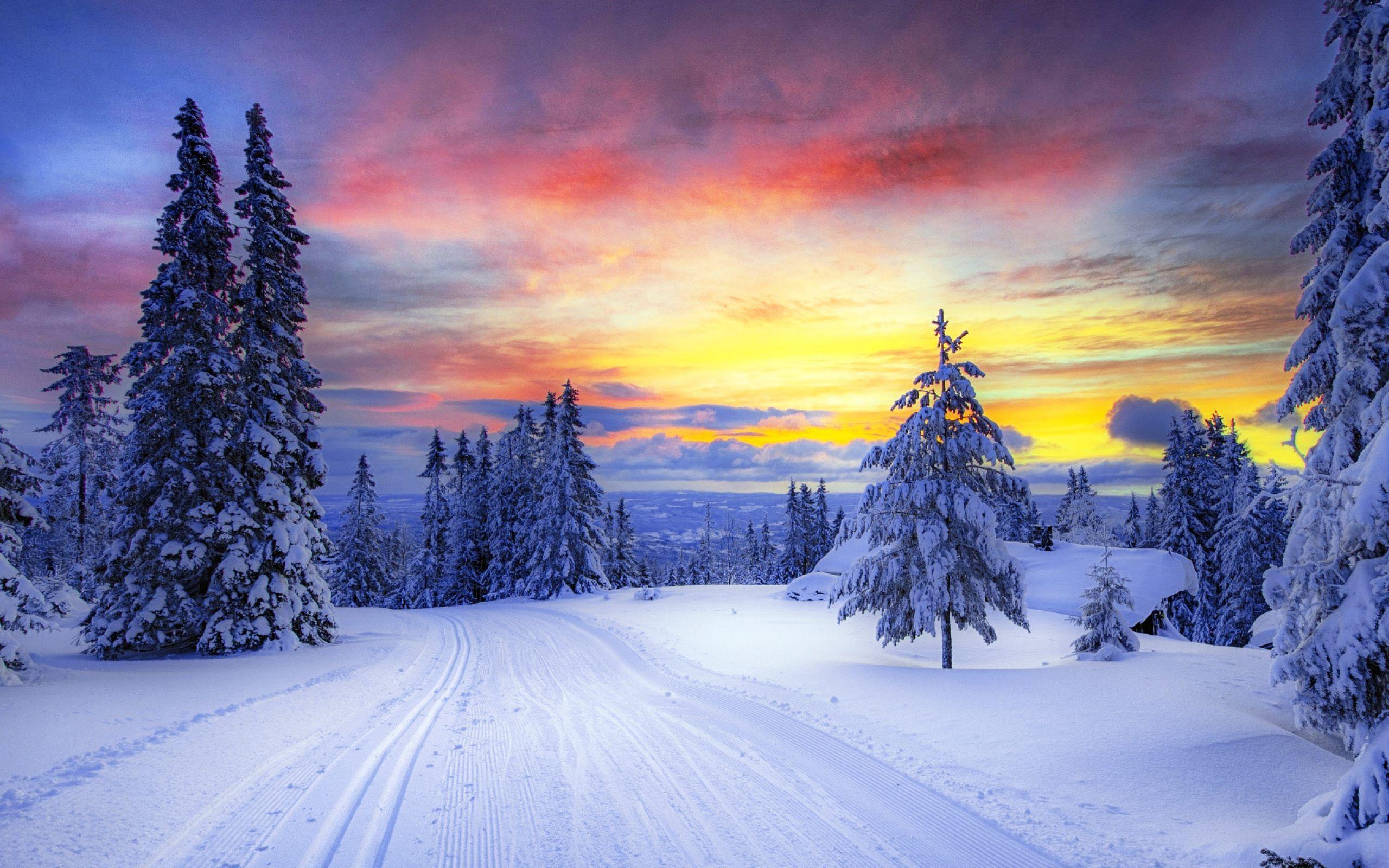 ảnh về mùa đông hà nội