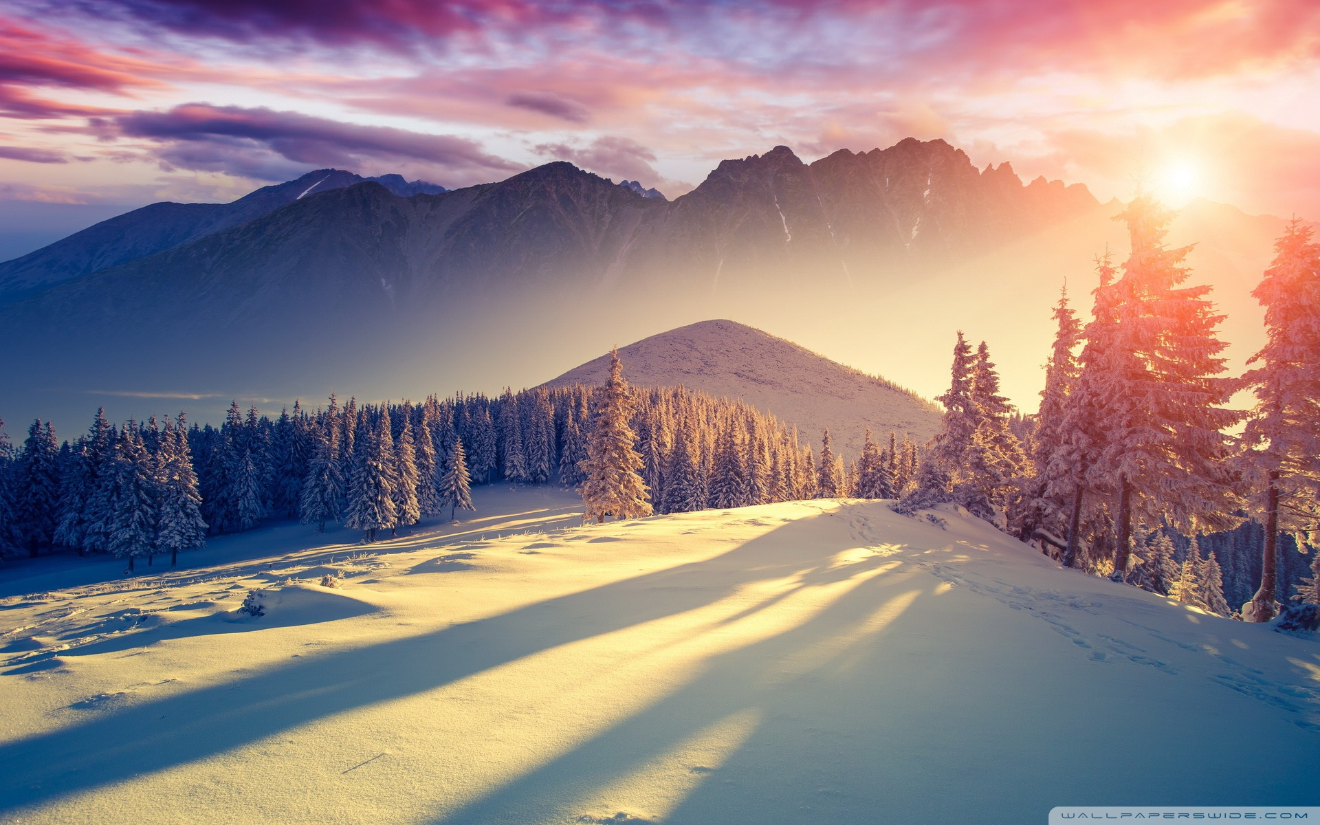 ảnh đẹp mùa đông không lạnh