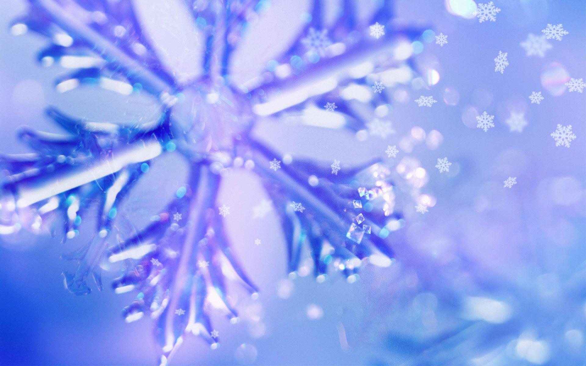 hình nền mùa đông dong