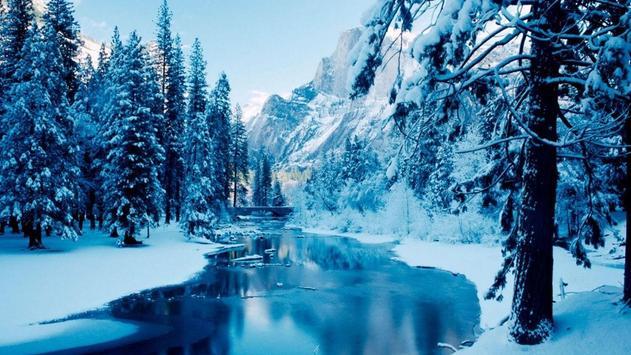 hình ảnh về mùa đông giá rét