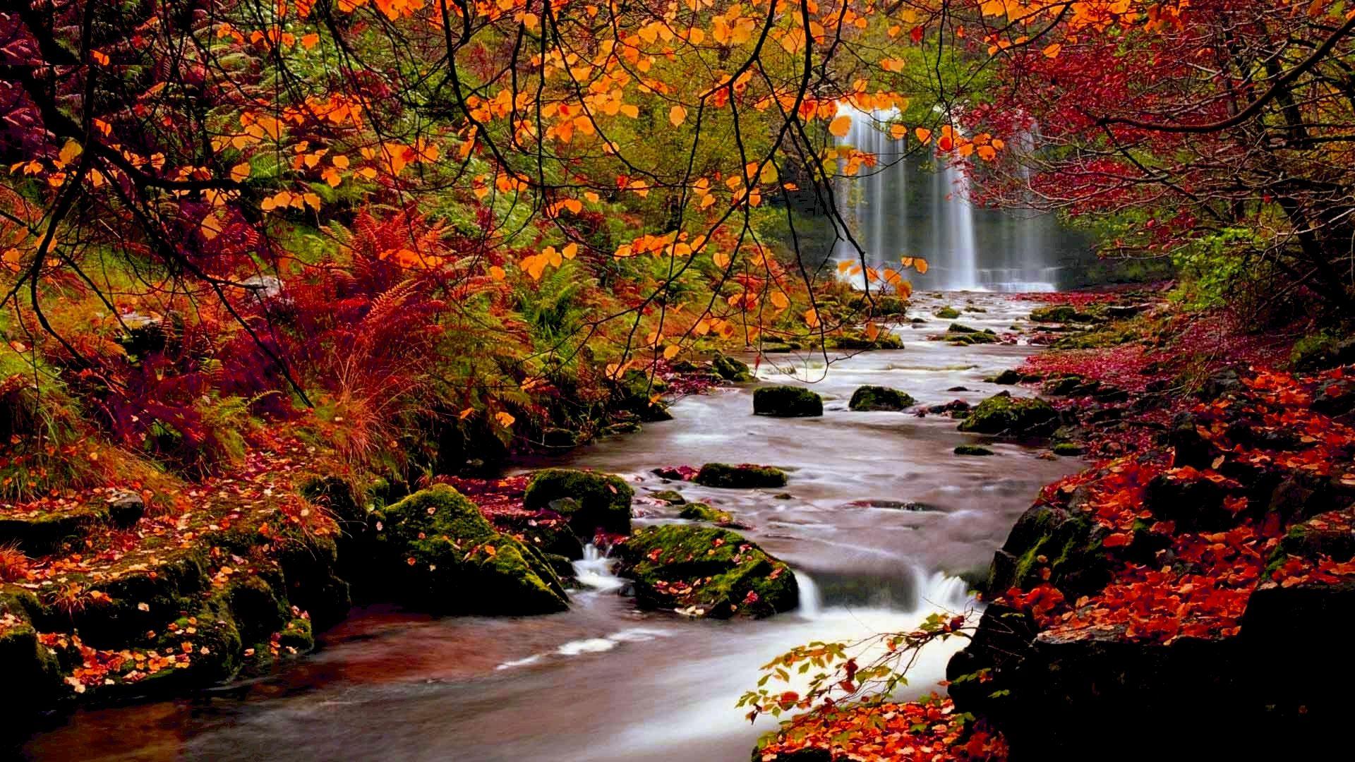 hình nền mùa thu full hd