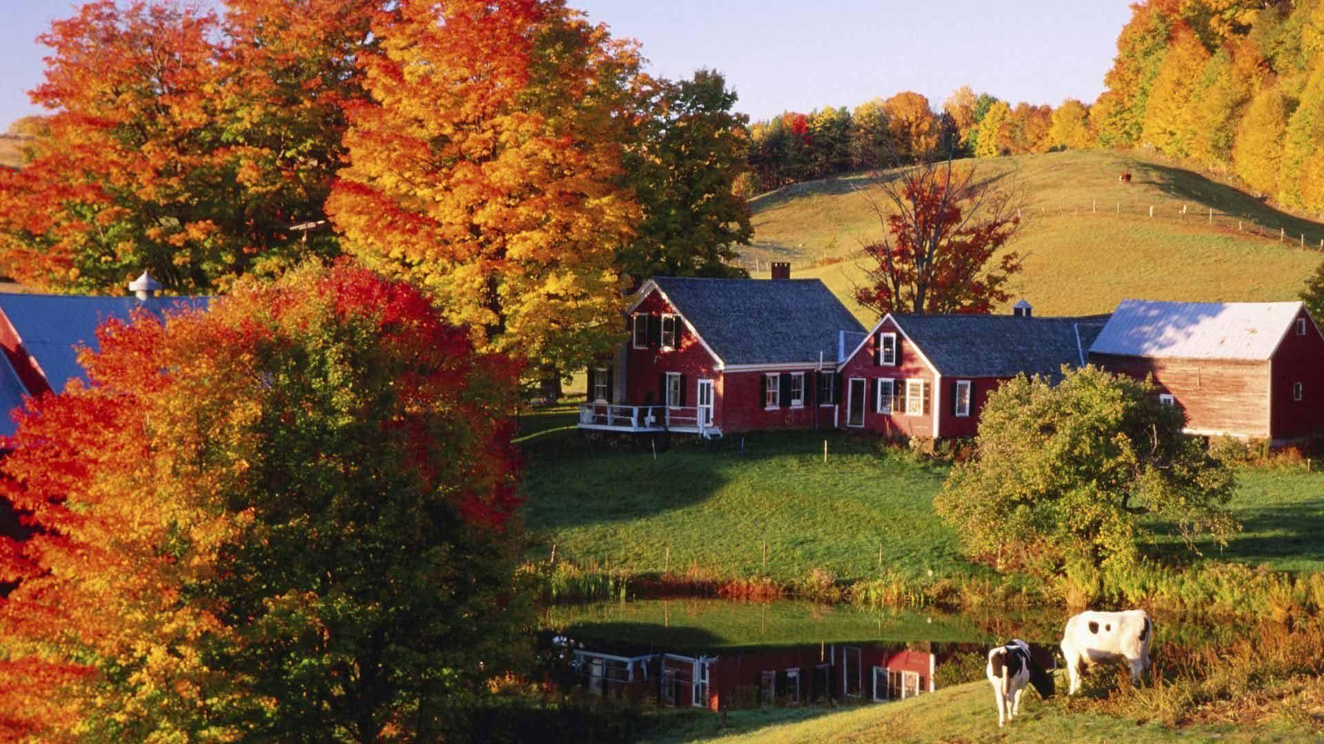 hình ảnh mùa thu trong thơ ca