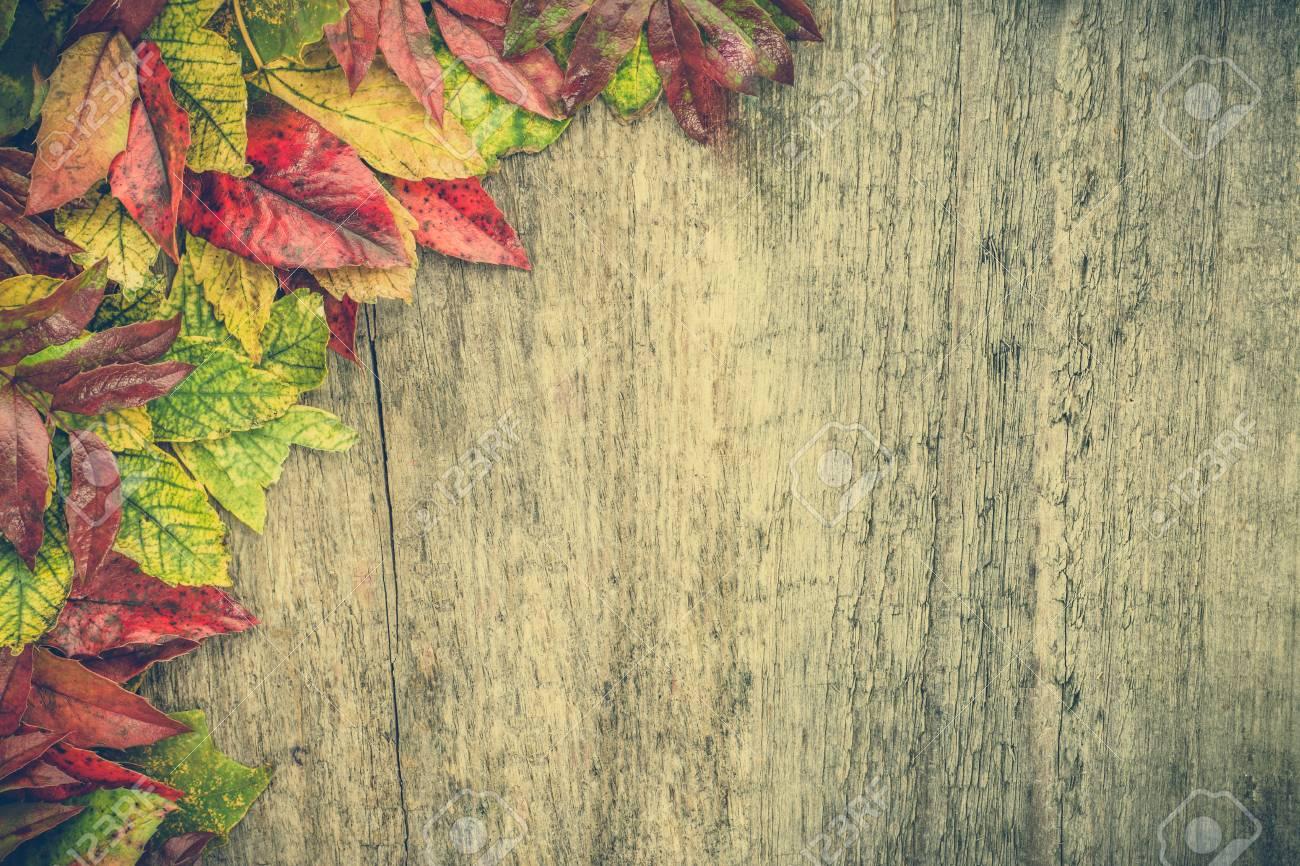 hình nền mùa thu đẹp cho điện thoại