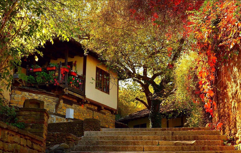 ảnh đẹp sapa mùa thu