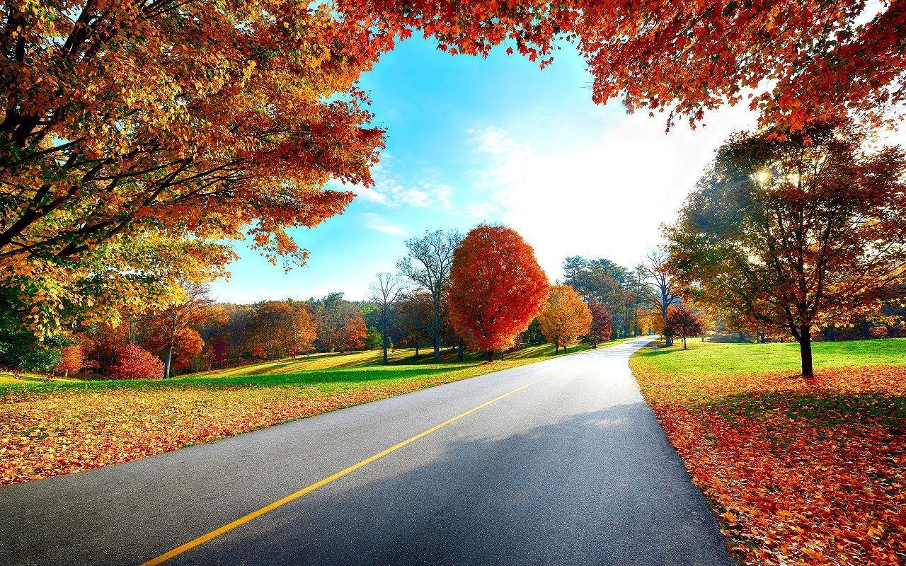 hình ảnh ý nghĩa về mùa thu