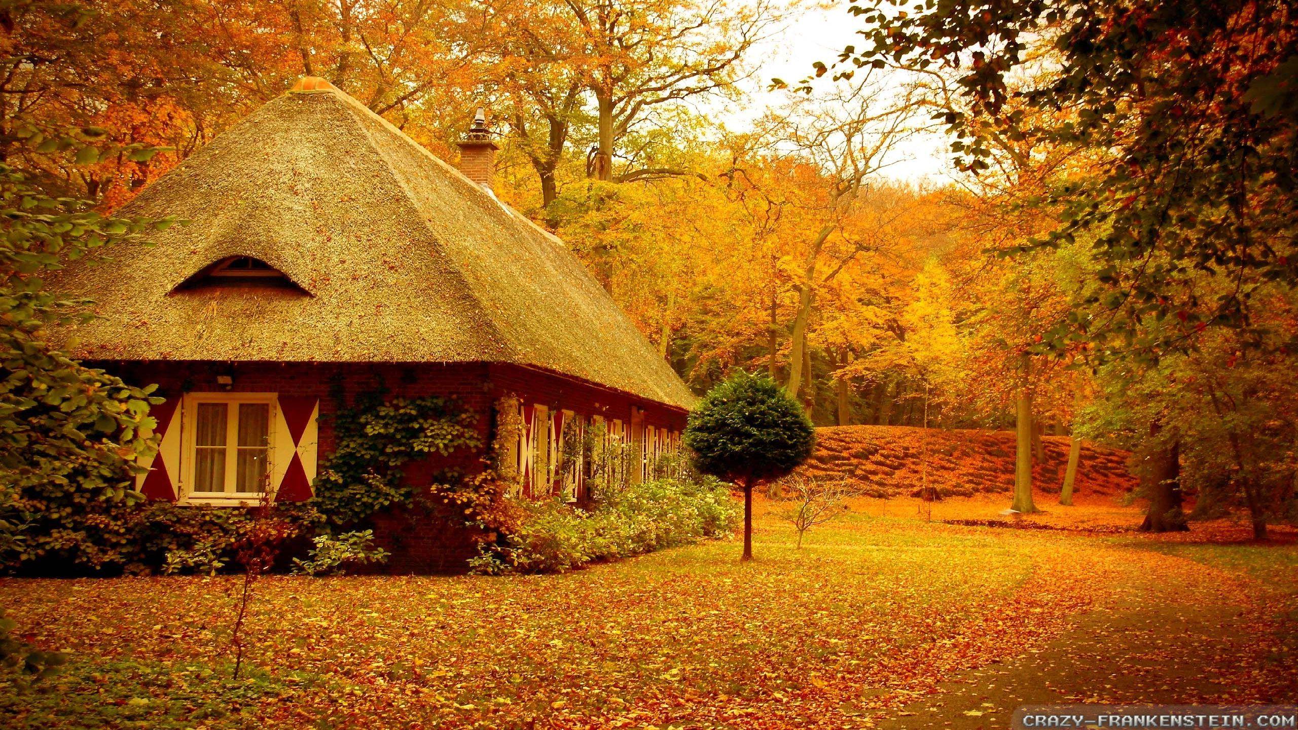 hình ảnh mùa thu miền bắc