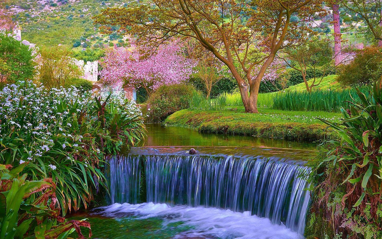ảnh đẹp mùa xuân hà nội