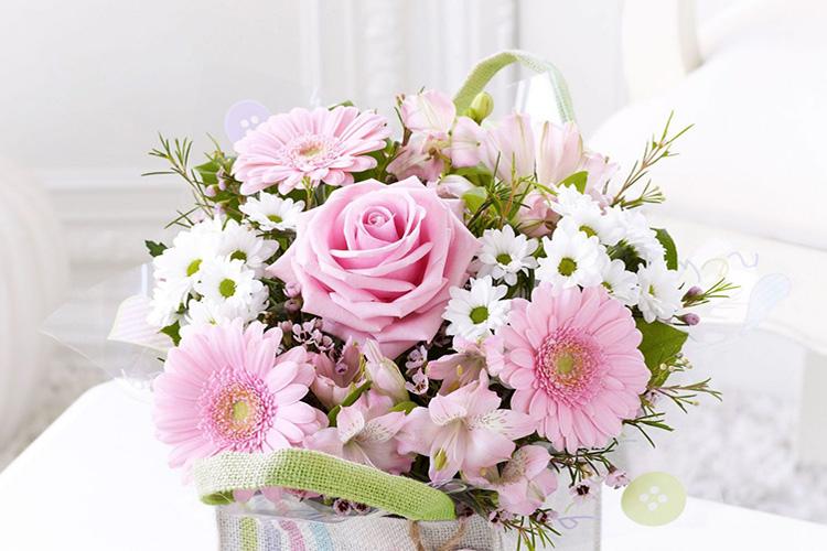 hình ảnh hoa 20 10