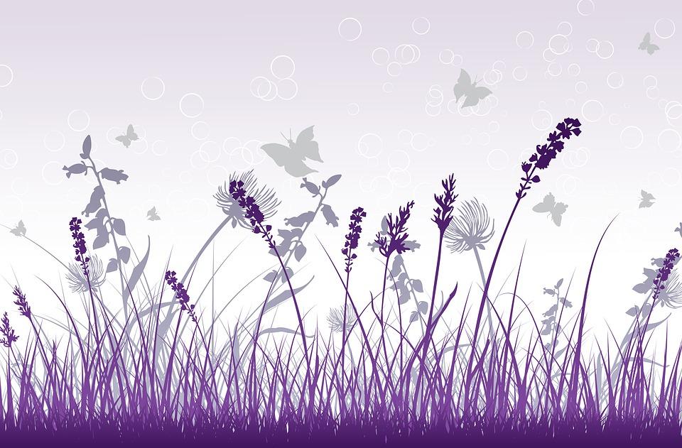 hoa màu tím và trắng