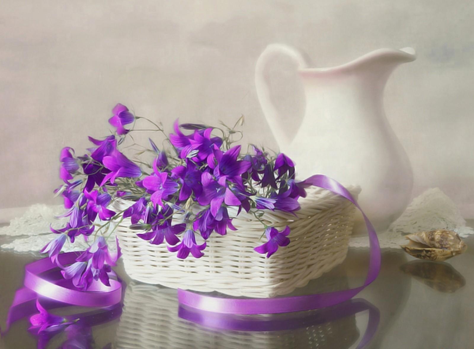 hoa nguyệt quế màu tím