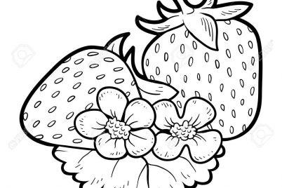 cách vẽ trái cây