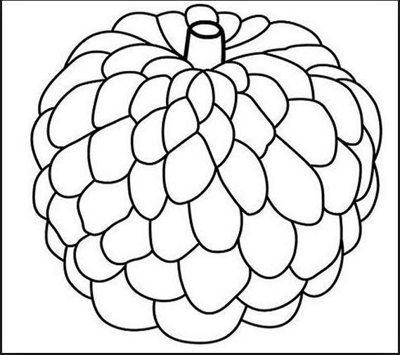 hình ảnh các loại quả