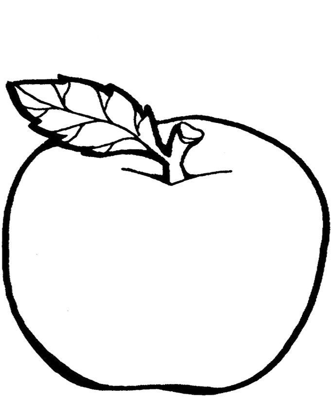 hình ảnh một số loại quả