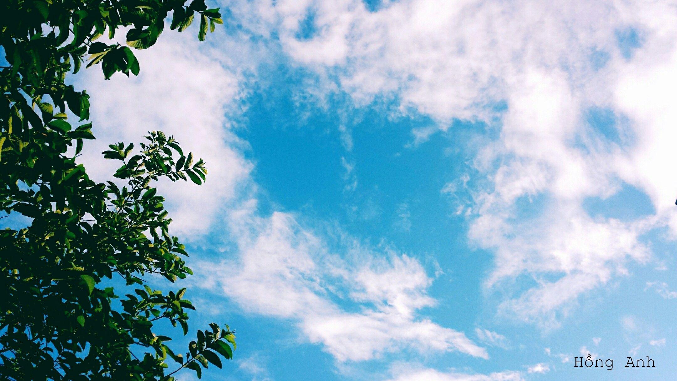 hình ảnh bầu trời giông bão