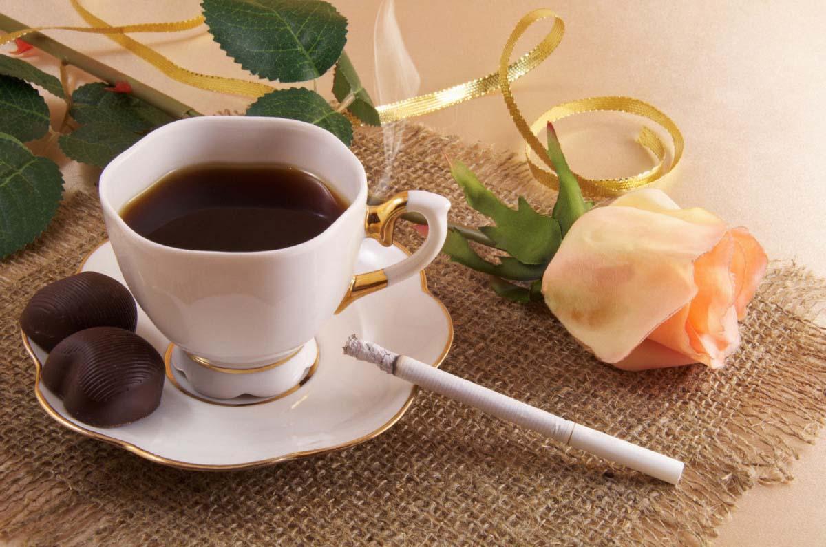 hình ảnh ly cà phê buổi sáng đẹp nhất