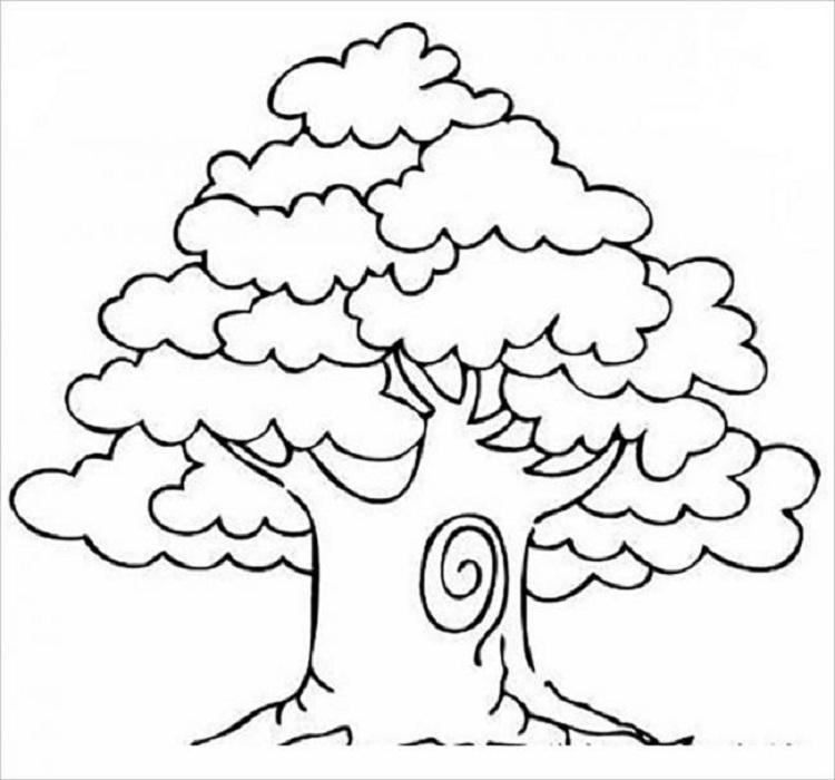 vẽ cây cỏ