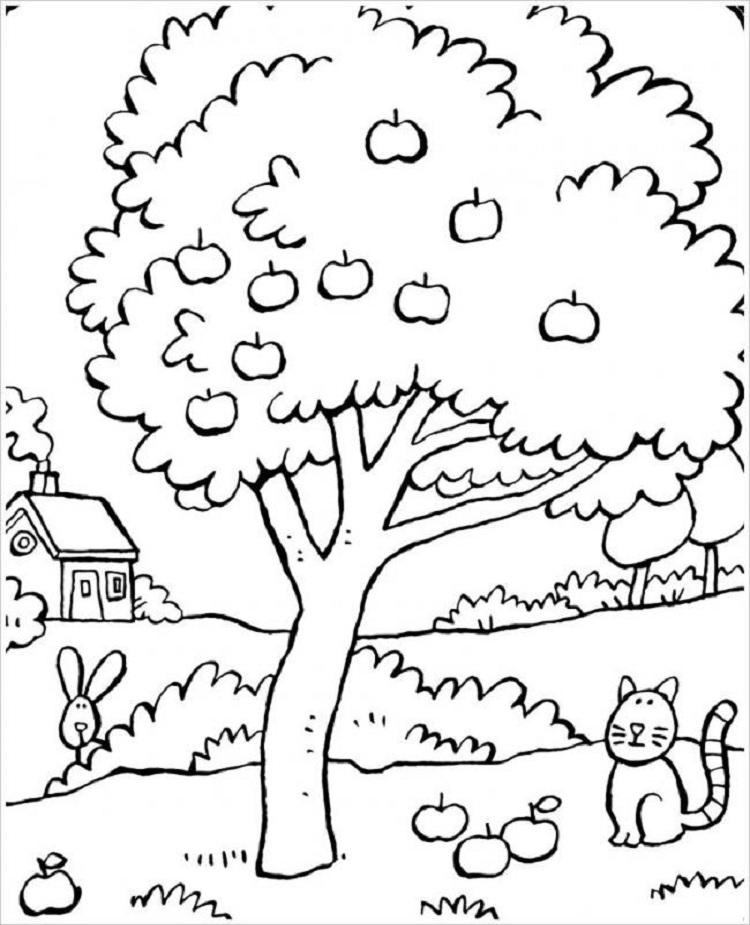 hình ảnh về cây xanh