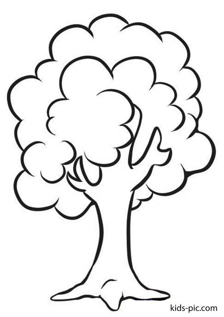 vẽ cây xanh