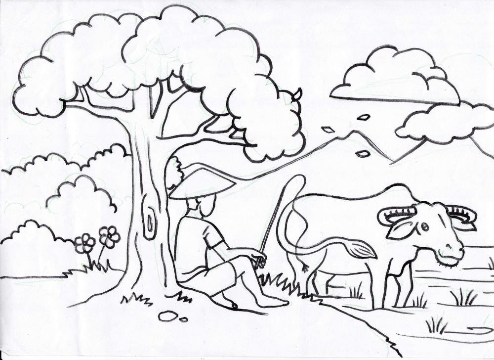 vẽ cây tre