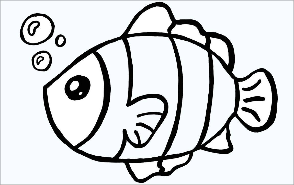 các loài cá đẹp