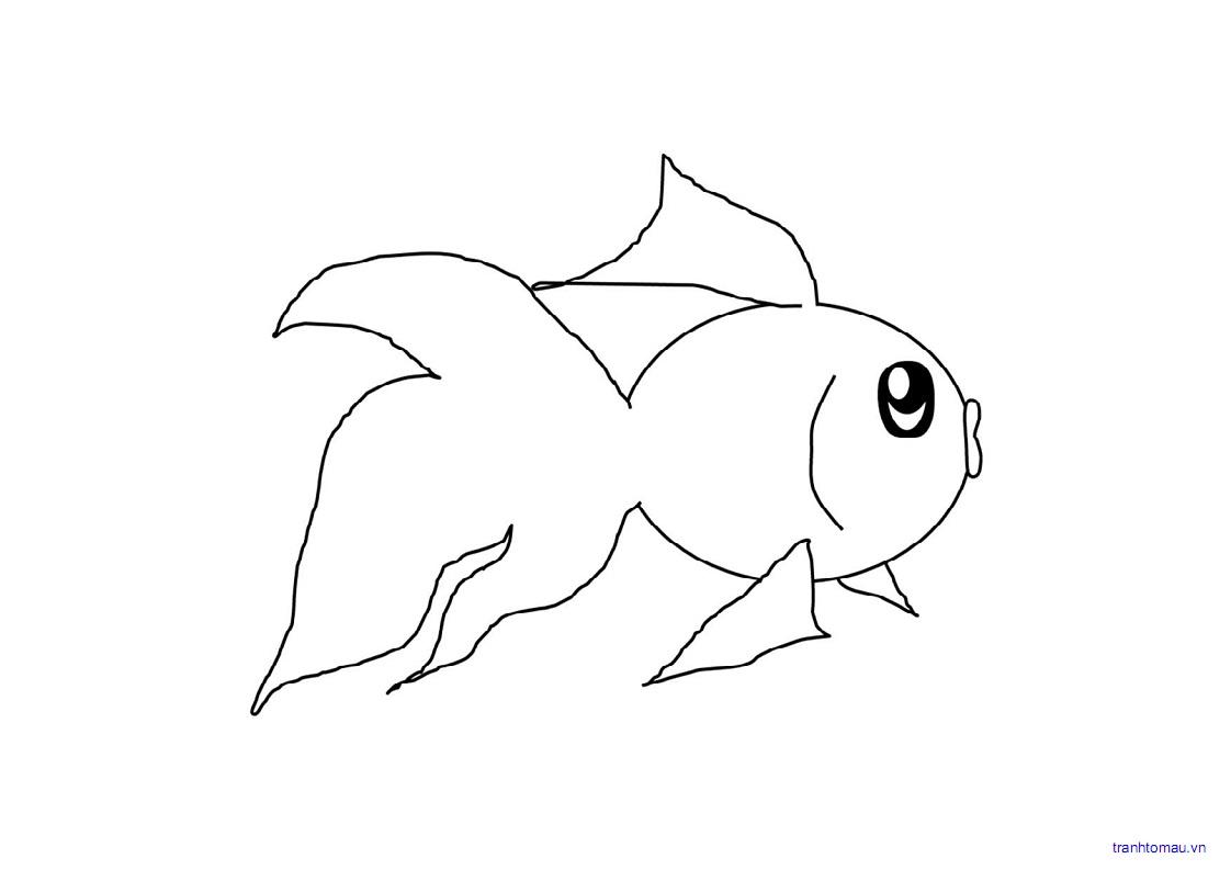 hình ảnh con cá