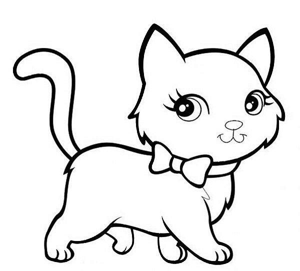 hình ảnh con mèo