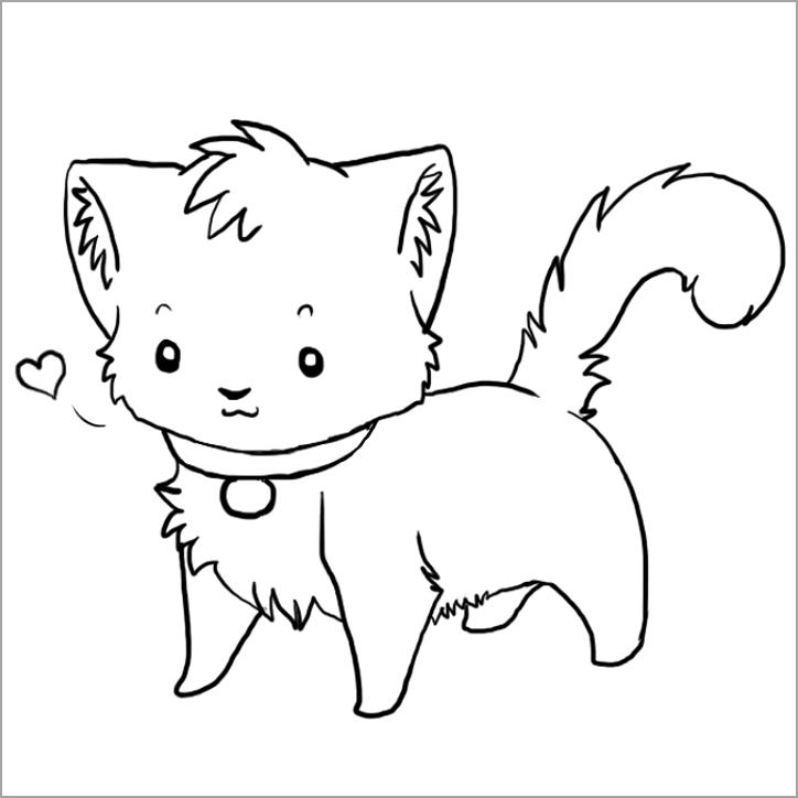 hình ảnh về con mèo