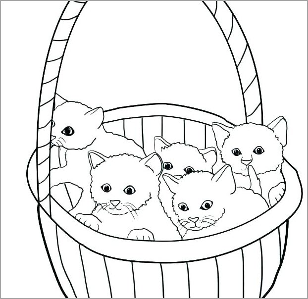hình vẽ mèo