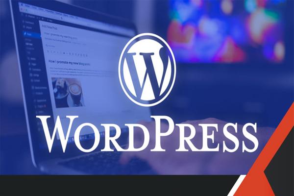 thiet-ke-web-wordpress-chat-luong-gia-tot-tai-vn4u